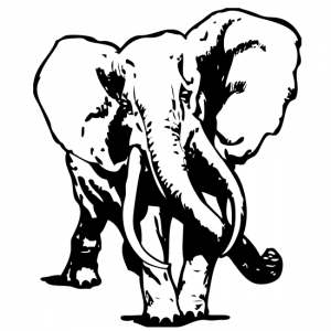 Elephant-Premium-Bins--550X550-Site-Icon